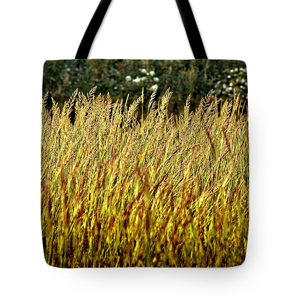 golden grasses Tote Bag by Meirion Matthias