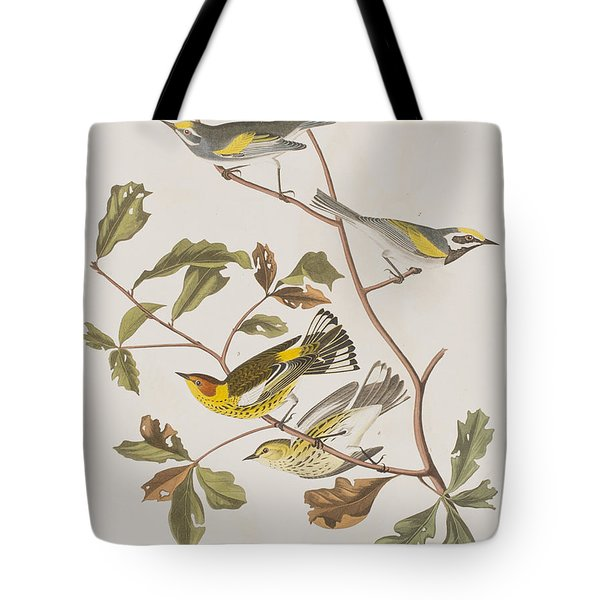 Golden Winged Warbler Or Cape May Warbler Tote Bag by John James Audubon