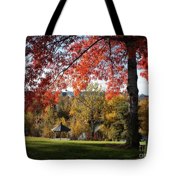 Gonzaga with Autumn Tree Canopy Tote Bag by Carol Groenen