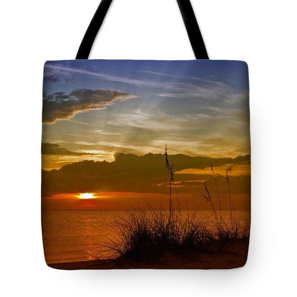 Gorgeous Sunset Tote Bag by Melanie Viola