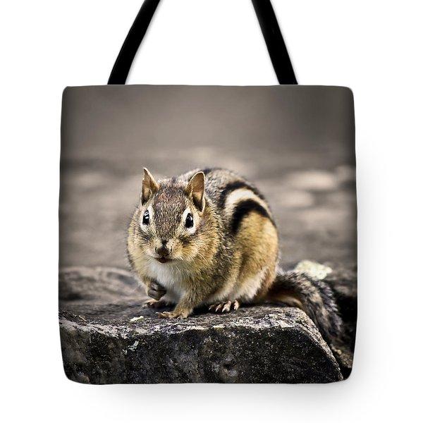 Got Nuts Tote Bag by Evelina Kremsdorf