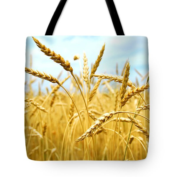Grain Field Tote Bag by Elena Elisseeva