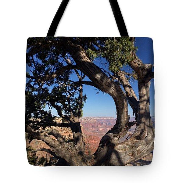 Grand Canyon No. 6 Tote Bag by Sandy Taylor