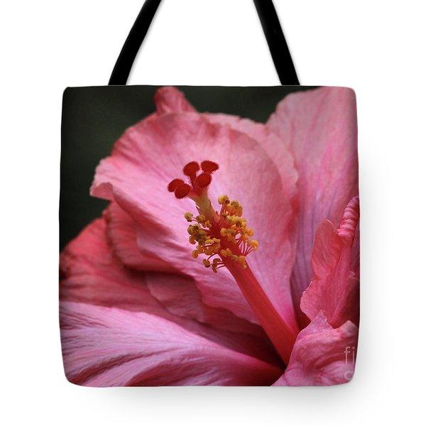 Grand Hibiscus Tote Bag by Sabrina L Ryan