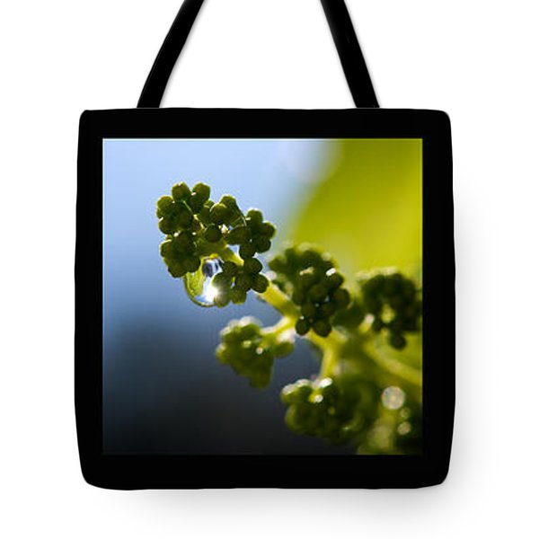 Grape Vines And Water Drops Triptych Tote Bag by Lisa Knechtel