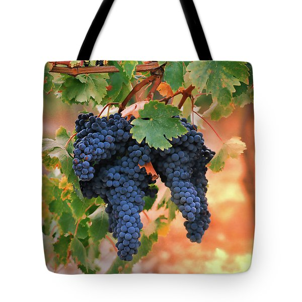 Grapes of Tuscany Tote Bag by Dallas Clites