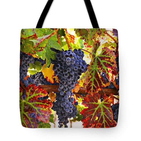 Grapes on vine in vineyards Tote Bag by Garry Gay