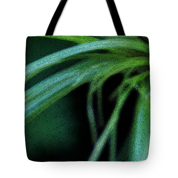Grass Dance Tote Bag by Linda Shafer