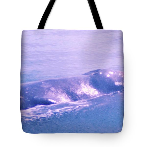 Gray Whale  Tote Bag by Jeff Swan