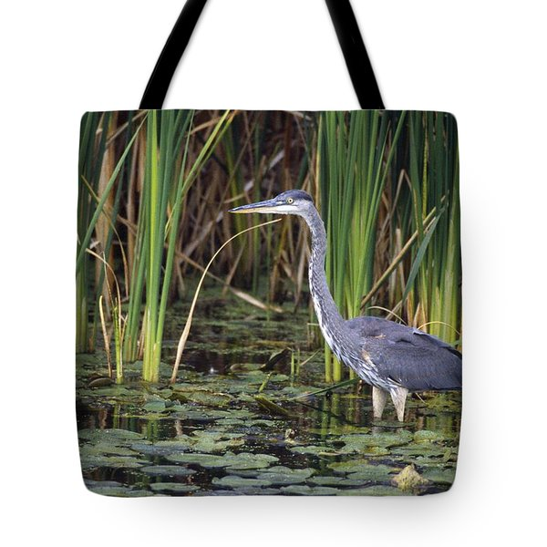 Great Blue Heron Tote Bag by Natural Selection David Spier