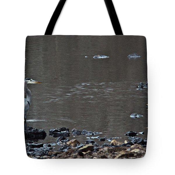 Great Blue Heron Wading 1 Tote Bag by Douglas Barnett
