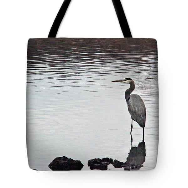 Great Blue Heron Wading 3 Tote Bag by Douglas Barnett