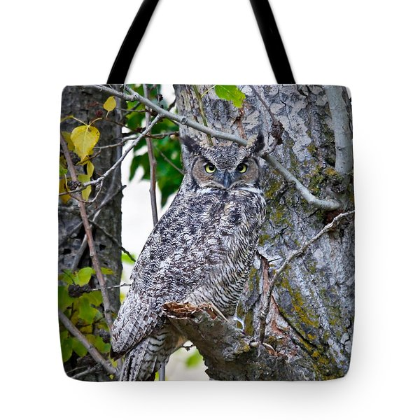 Great Horned Owl Tote Bag by Athena Mckinzie