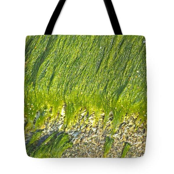 Green Algae On Rock Tote Bag by Kenneth Albin
