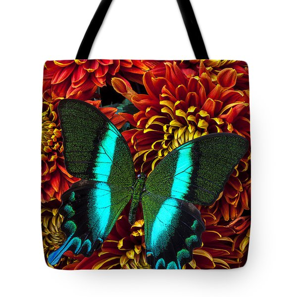 Green blue butterfly Tote Bag by Garry Gay