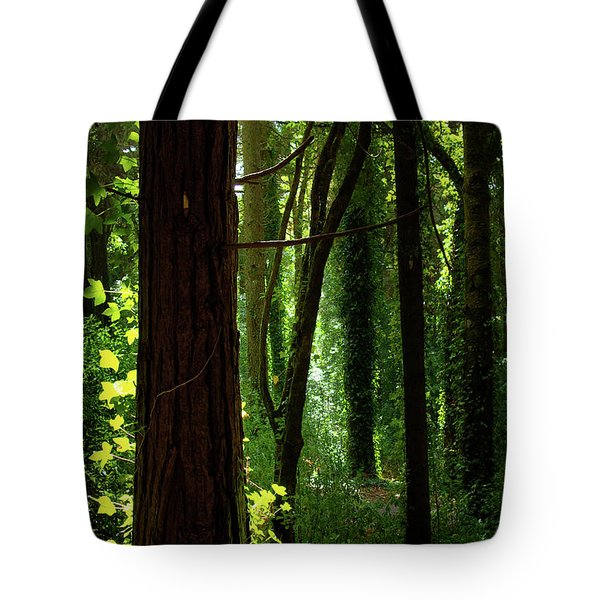 Green Forest Tote Bag by Carlos Caetano