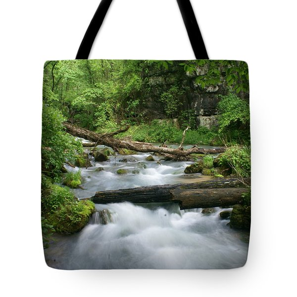 Greer Spring Branch 1 Tote Bag by Marty Koch