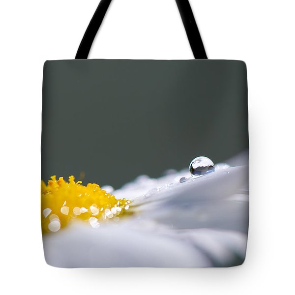 Grey And Yellow Daisy Tote Bag by Lisa Knechtel