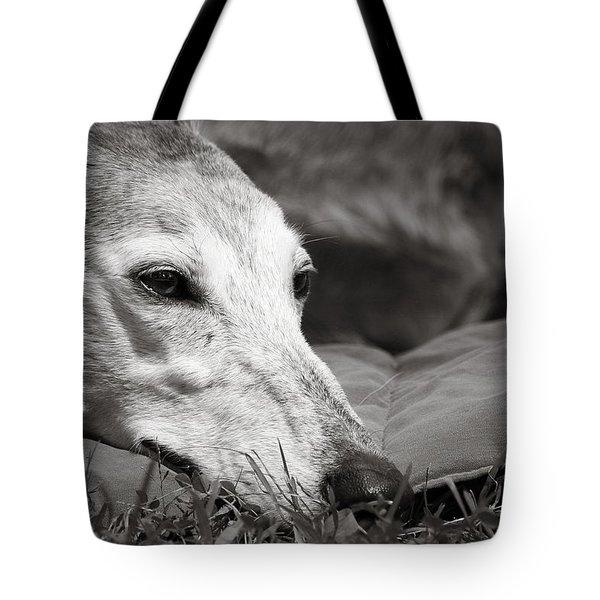 Greyful Tote Bag by Angela Rath