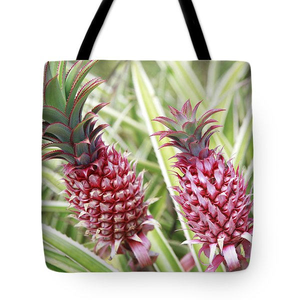 Growing Red Pineapples Tote Bag by Brandon Tabiolo - Printscapes