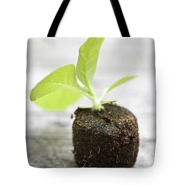 Growth Tote Bag by Frank Tschakert