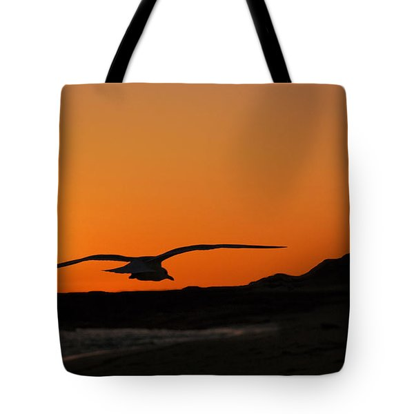 Gull At Sunset Tote Bag by Dave Dilli