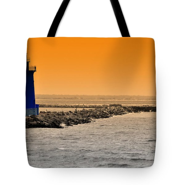 Hamels Tote Bag by Trish Tritz