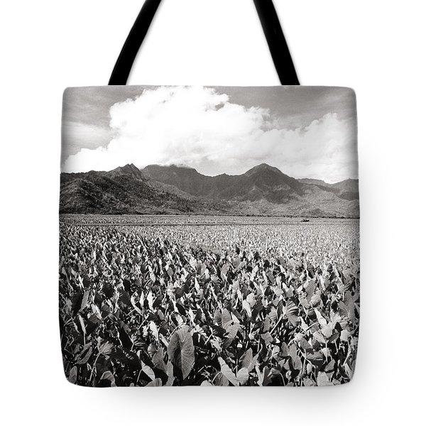 Hanalei Taro Fields Tote Bag by Bob Abraham - Printscapes