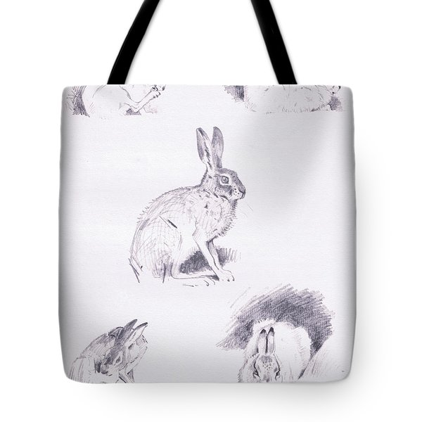 Hare Studies Tote Bag by Archibald Thorburn