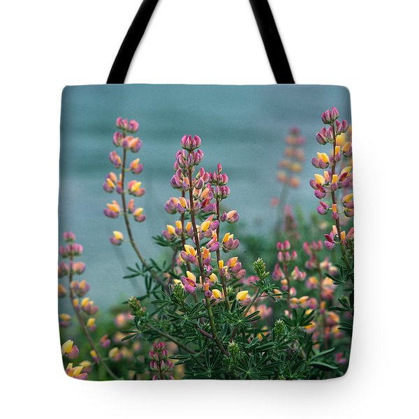 Harlequins In Harmony Tote Bag by Kathy Yates