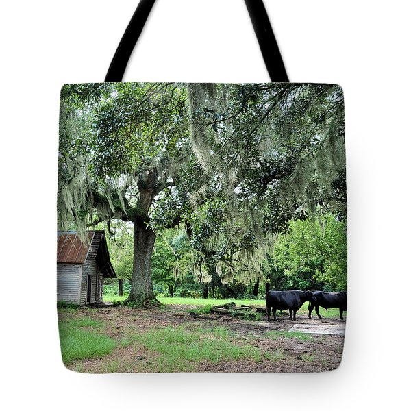 Havana Steers Tote Bag by Jan Amiss Photography