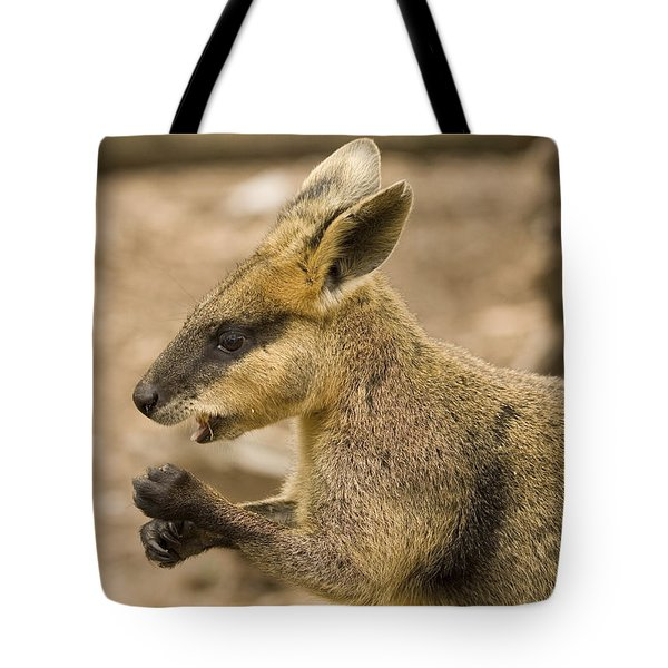 Having a Snack Tote Bag by Mike  Dawson