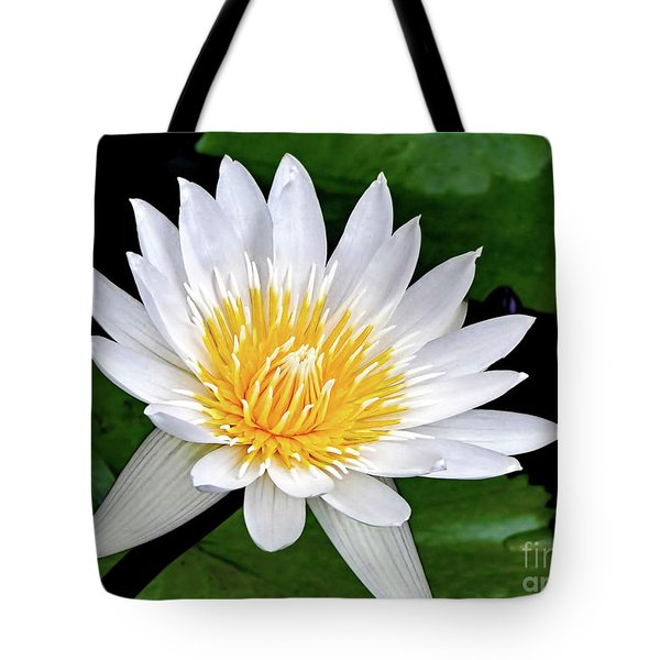 Hawaiian White Water Lily Tote Bag by Sue Melvin