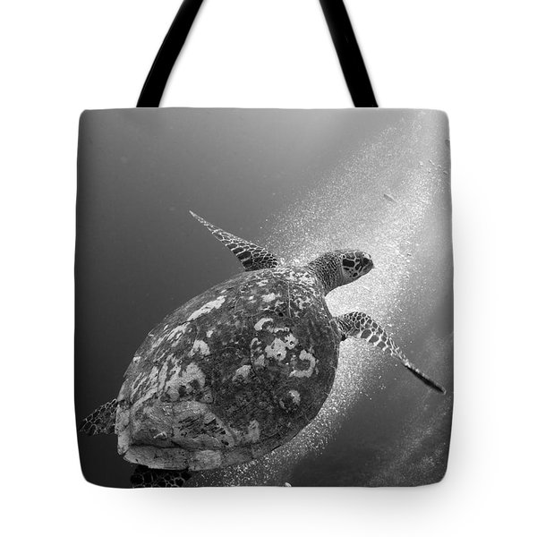 Hawksbill Turtle Ascending Tote Bag by Steve Jones