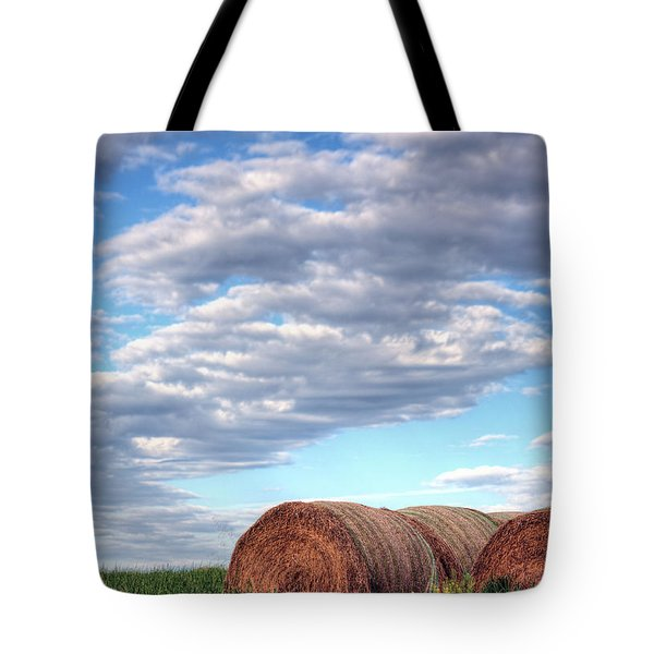Hay It's Art Tote Bag by JC Findley