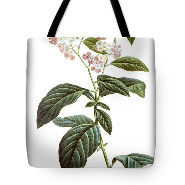 Heliotrope Tote Bag by Granger