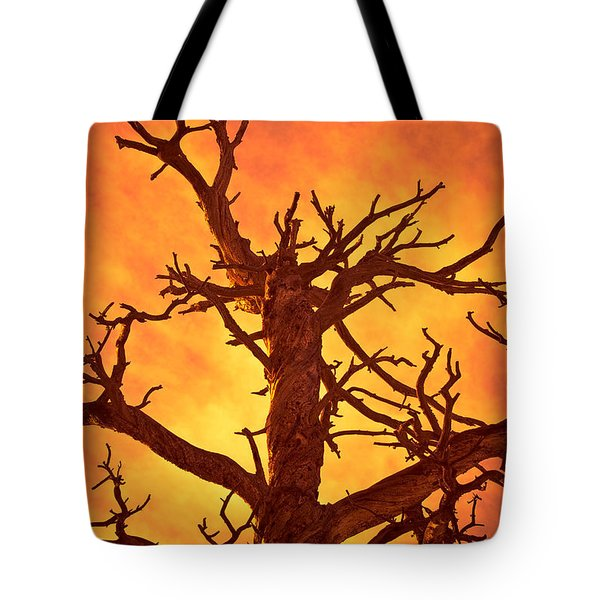 Hell Tote Bag by Charles Dobbs