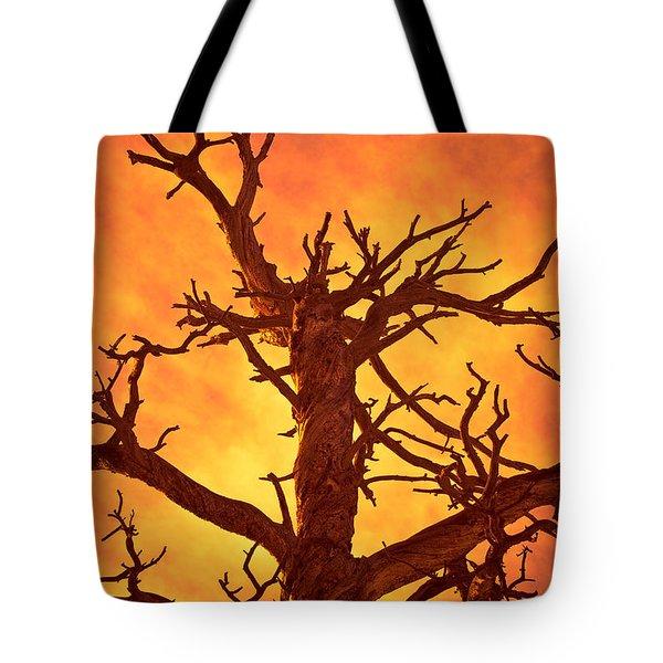 HELL Tote Bag by Charles Dobbs