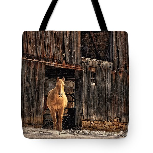 Hello Sweetheart Tote Bag by Lois Bryan
