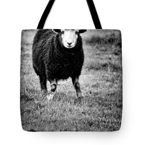 Herdwick Sheep Tote Bag by Meirion Matthias