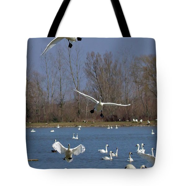 Here Come The Swans Tote Bag by Bill Lindsay