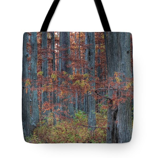 Heron Pond Twilight Tote Bag by Steve Gadomski