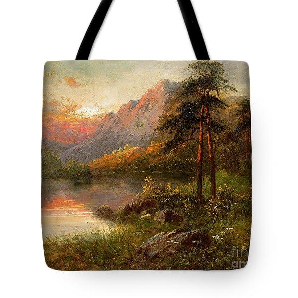 Highland Solitude Tote Bag by Frank Hider