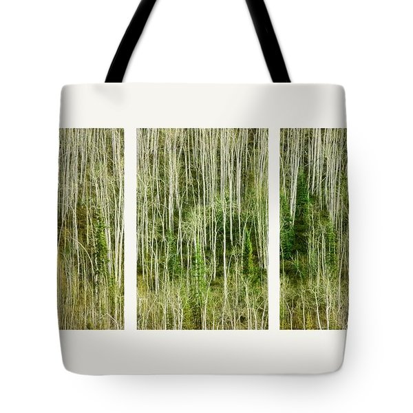 hillside forest Tote Bag by Priska Wettstein