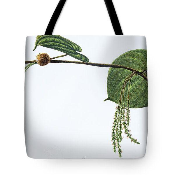 Hoi Tote Bag by Hawaiian Legacy Archive - Printscapes