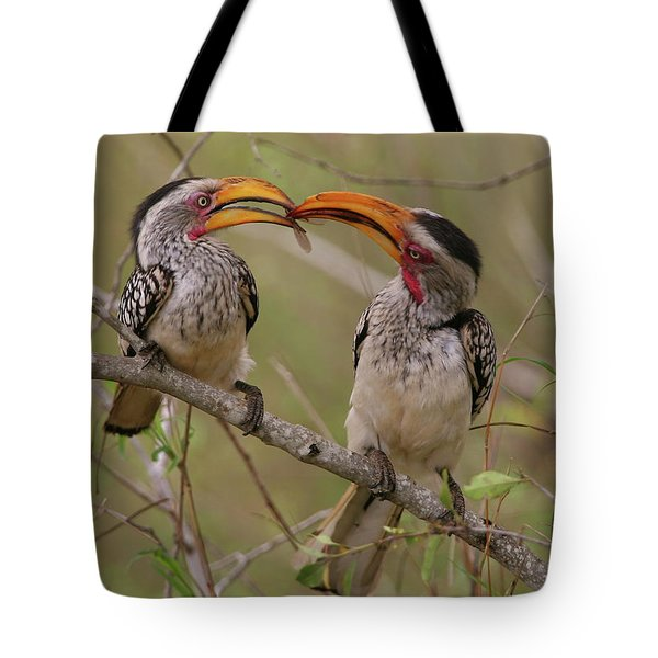 Hornbill Love Tote Bag by Bruce J Robinson