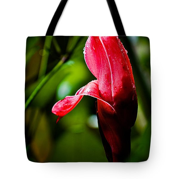 Horned Blossom Tote Bag by Christopher Holmes