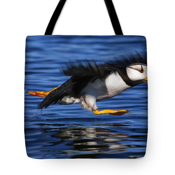 Horned Puffin  Fratercula Corniculata Tote Bag by Marion Owen