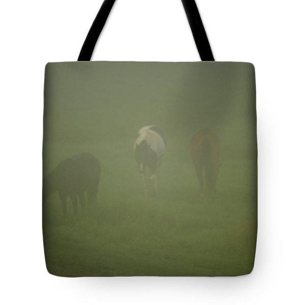 Horses Grazing In The Mist Tote Bag by Steve Gadomski