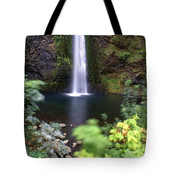 Horsetail Falls Basin Tote Bag by Marty Koch